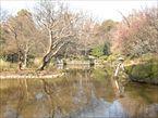 有栖川宮記念公園4