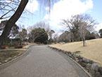 江古田の森公園3