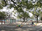 萩中公園5