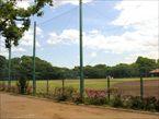 羽根木公園7