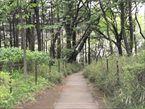 羽根木公園8