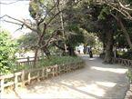 碑文谷公園4