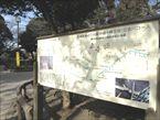 碑文谷公園5
