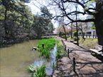 宝来公園2
