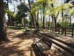 宝来公園7