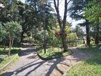 宝来公園9