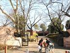 大森貝塚遺跡庭園1