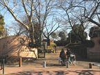 大森貝塚遺跡庭園3