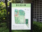 柏の宮公園2