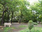 柏の宮公園8