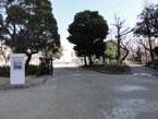 錦糸公園5