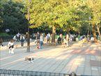駒沢オリンピック公園7