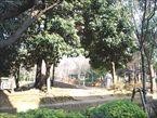 教育の森公園2