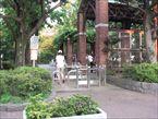 馬橋公園2