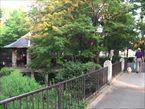 馬橋公園4