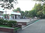 馬橋公園5