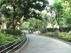 馬橋公園6