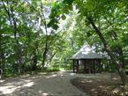 三井の森公園1