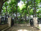 三井の森公園5