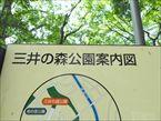 三井の森公園7