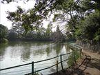 武蔵関公園1