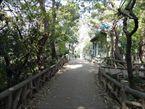 武蔵関公園4