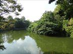武蔵関公園7