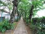 雷神山児童遊園8