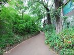 雷神山児童遊園9