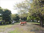 西郷山公園5