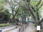 中町せせらぎ緑地公園1
