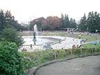 世田谷公園5