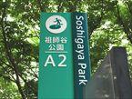 祖師谷公園3