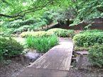 祖師谷公園6