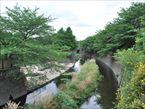 祖師谷公園7