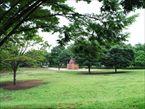 祖師谷公園8