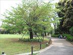 菅刈公園2