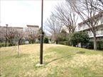 田柄梅林公園6