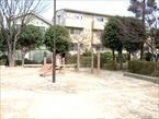 田柄梅林公園7