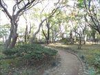 高橋是清記念公園10