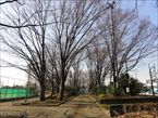 玉川野毛町公園2
