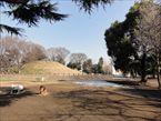 玉川野毛町公園3