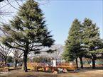 玉川野毛町公園4