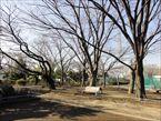 玉川野毛町公園9