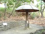 哲学堂公園4