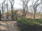 戸山公園9