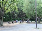塚山公園4