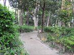 塚山公園6