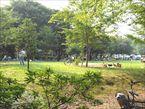 和田堀公園5