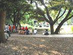 和田堀公園6